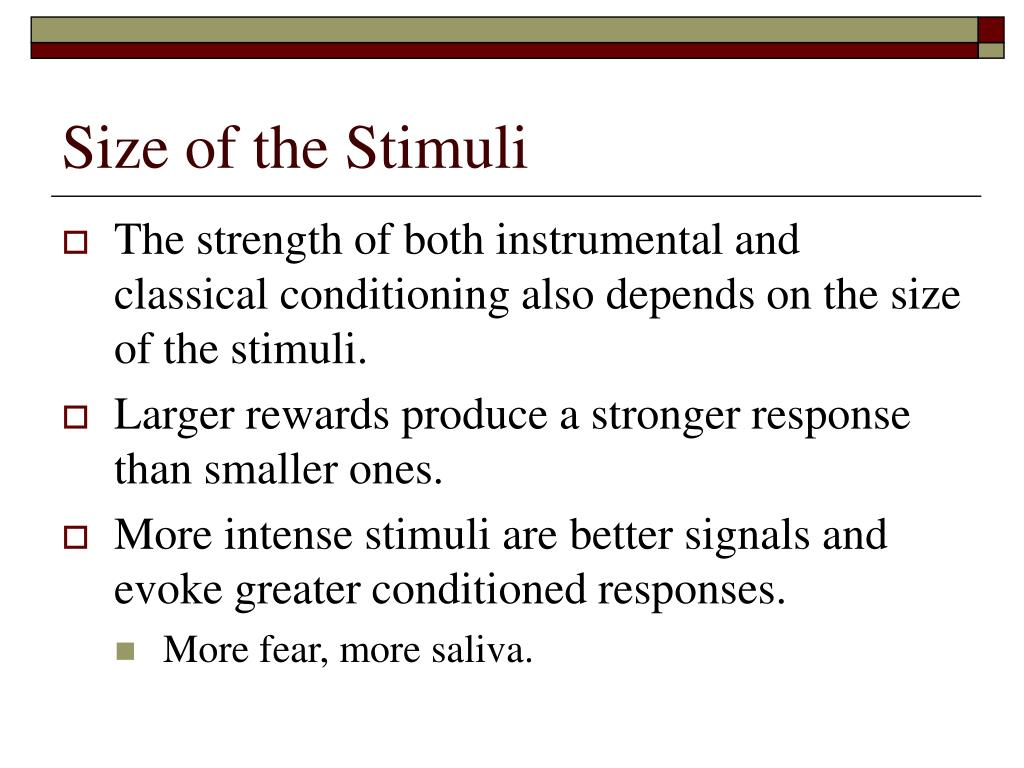 Size of the Stimuli
