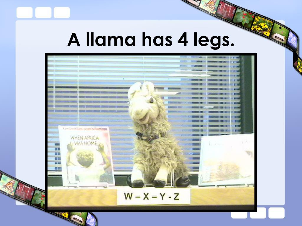 A llama has 4 legs.