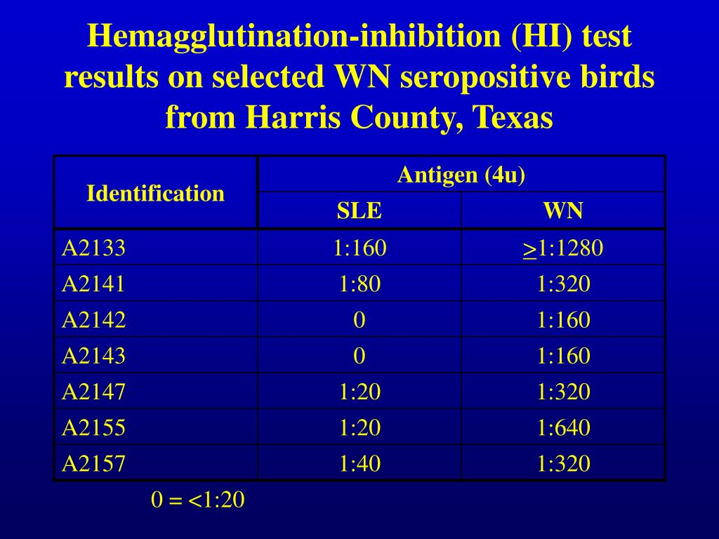 Hemagglutination-inhibition (HI) test results on selected WN seropositive birds from Harris County, Texas