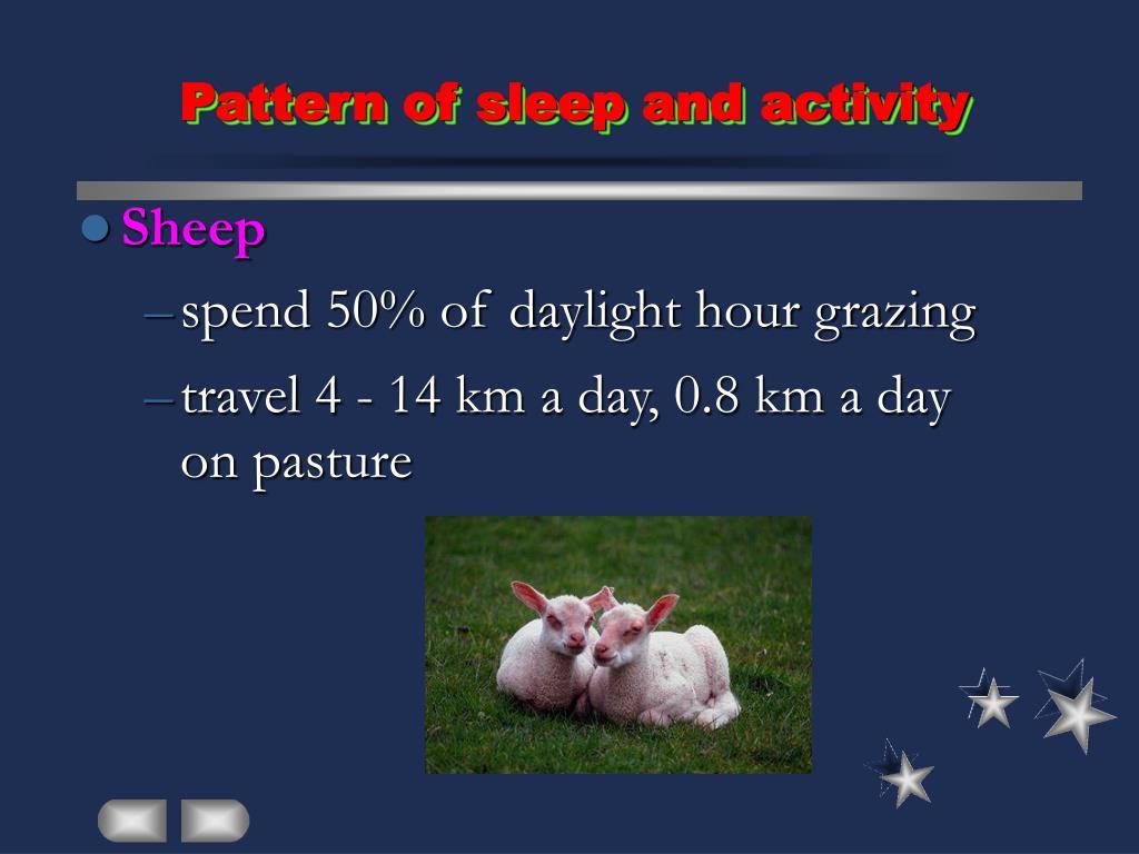 Pattern of sleep and activity
