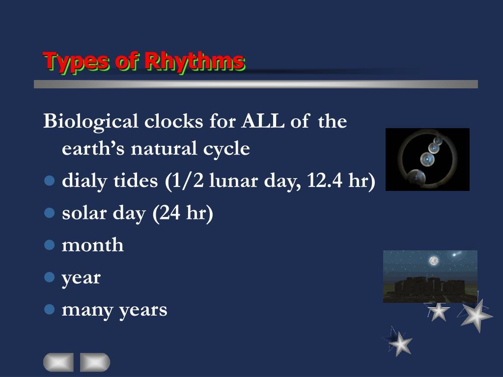 Types of Rhythms