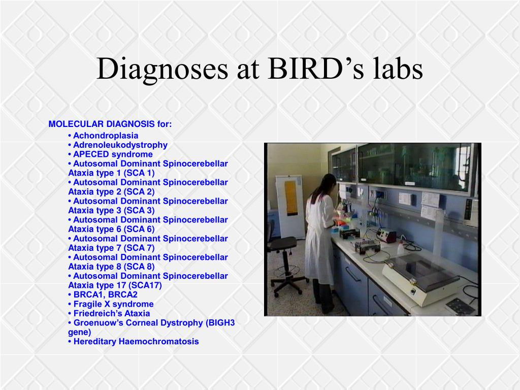 Diagnoses at BIRD's labs