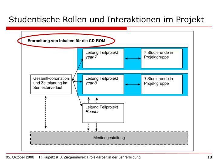 Studentische Rollen und Interaktionen im Projekt