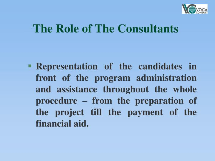 The Role of The Consultants