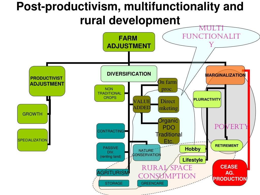 Post-productivism, multifunctionality and rural development