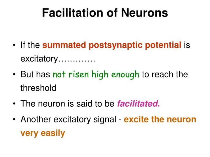Facilitation of Neurons