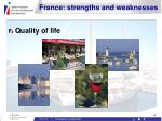france strengths and weaknesses14
