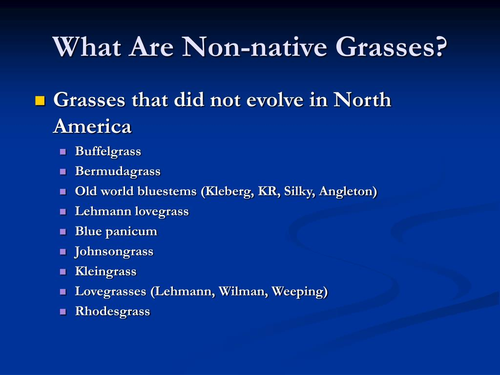 What Are Non-native Grasses?