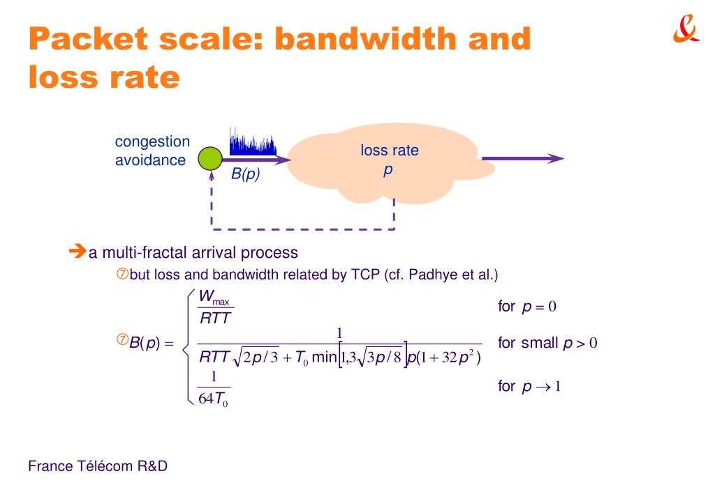 Packet scale: bandwidth and loss rate