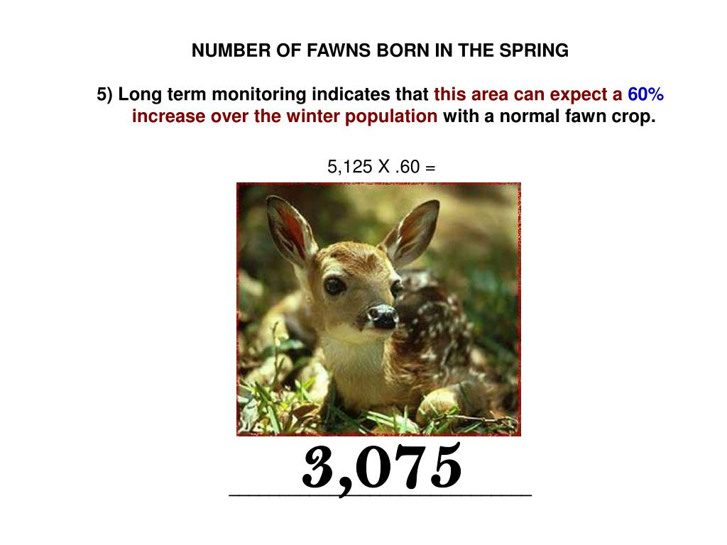 NUMBER OF FAWNS BORN IN THE SPRING