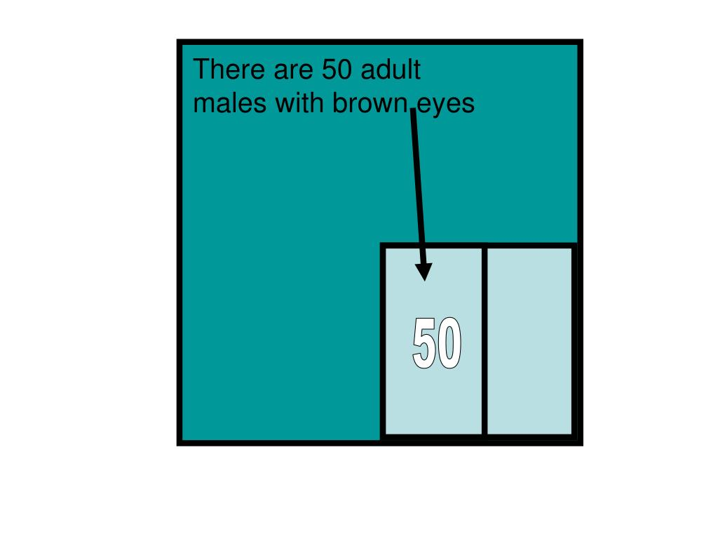 There are 50 adult males with brown eyes