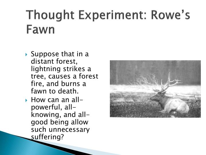 Thought experiment rowe s fawn