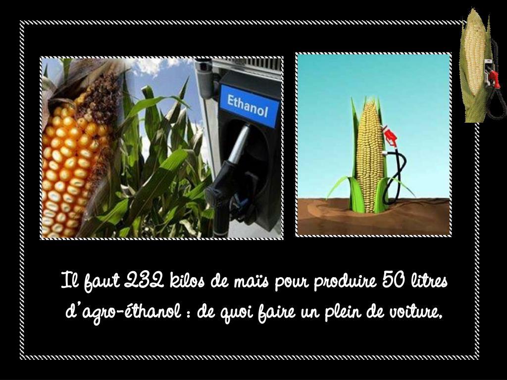 Il faut 232 kilos de maïs pour produire 50 litres d'agro-éthanol : de quoi faire un plein de voiture,