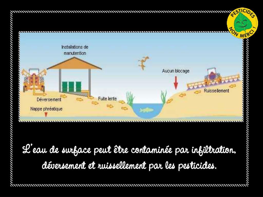 L'eau de surface peut être contaminée par infiltration, déversement et ruissellement par les pesticides.