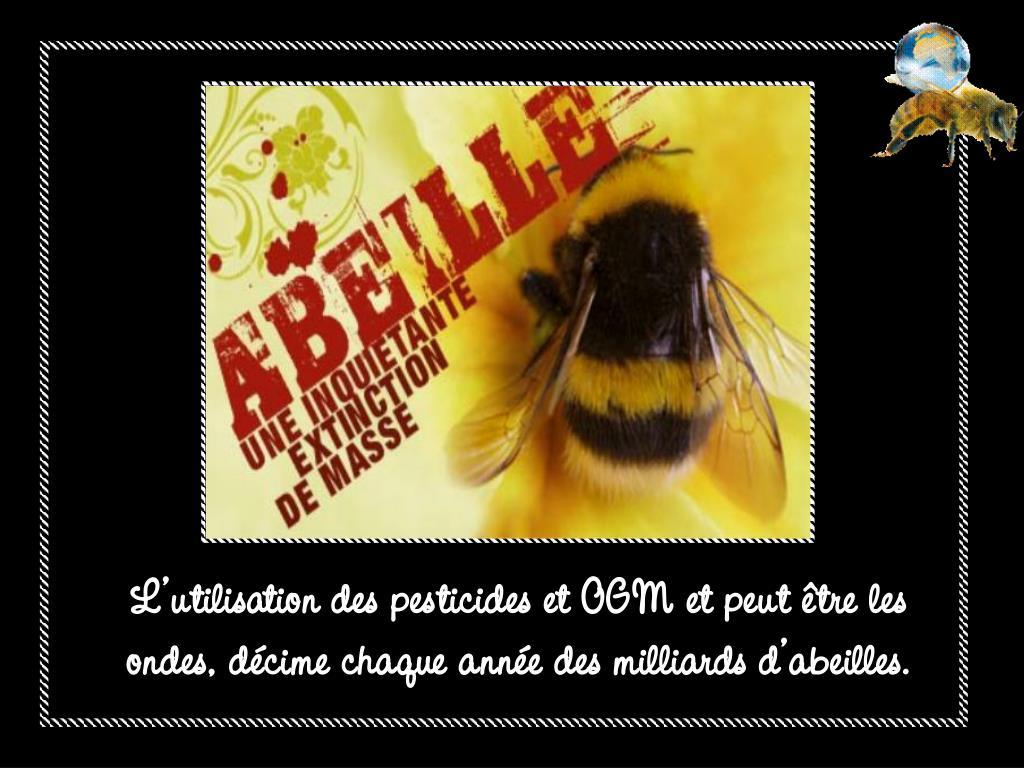 L'utilisation des pesticides et OGM et peut être les ondes, décime chaque année des milliards d'abeilles.