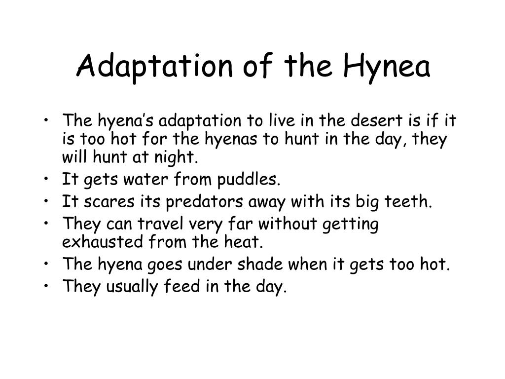Adaptation of the Hynea