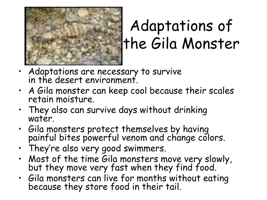 Adaptations of the Gila Monster