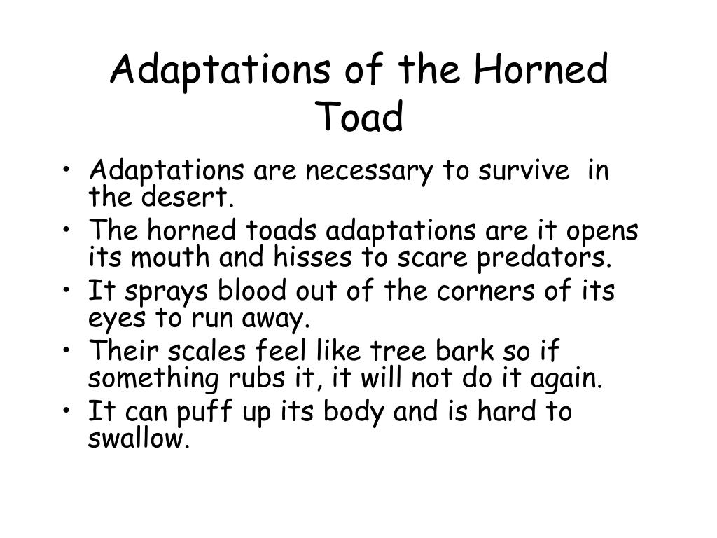 Adaptations of the Horned Toad
