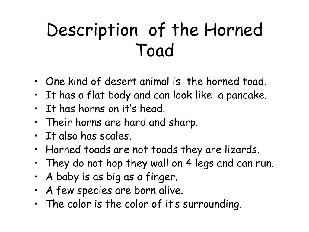 Description  of the Horned Toad