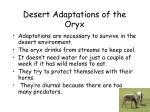 desert adaptations of the oryx