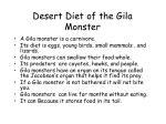desert diet of the gila monster