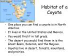 habitat of a coyote
