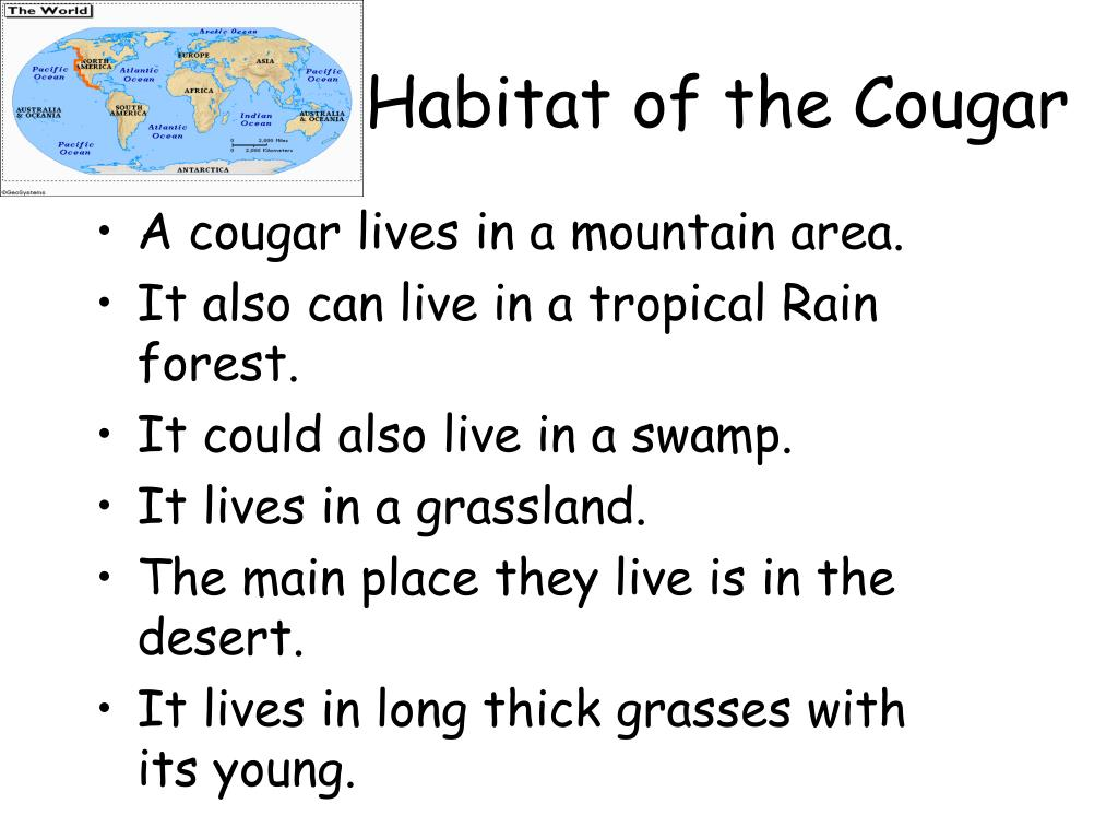 Habitat of the Cougar