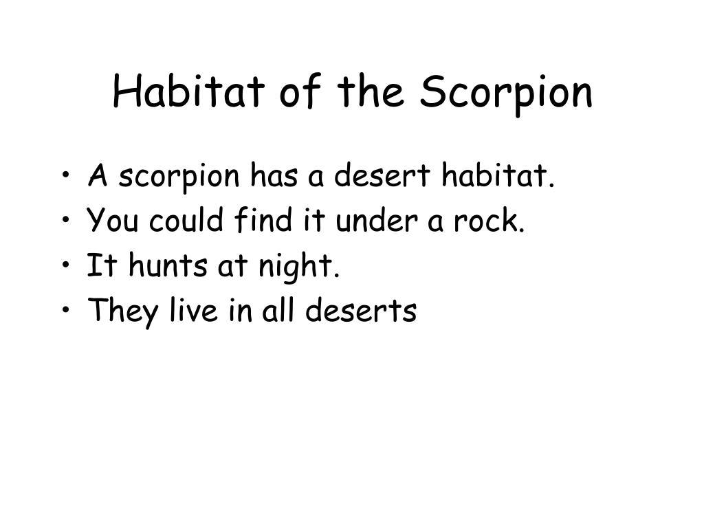 Habitat of the Scorpion