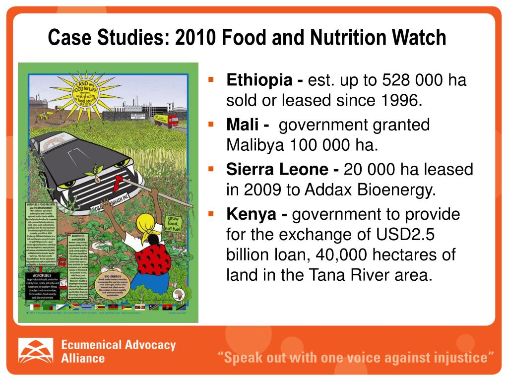 Case Studies: 2010 Food and Nutrition Watch