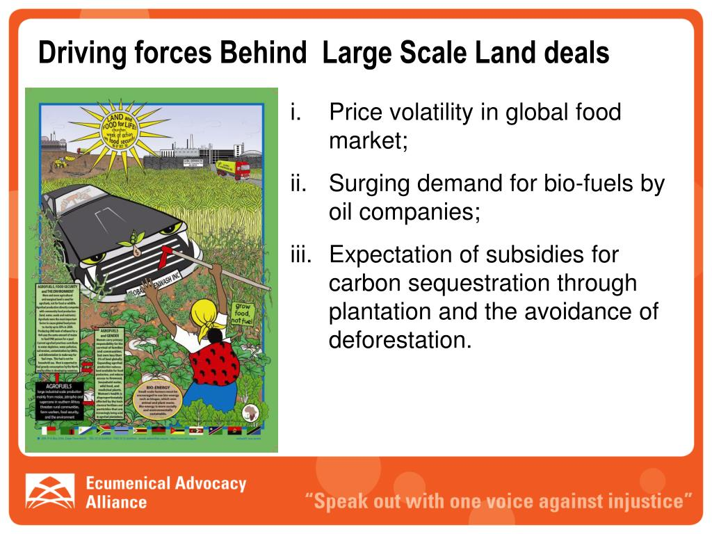 Driving forces Behind  Large Scale Land deals