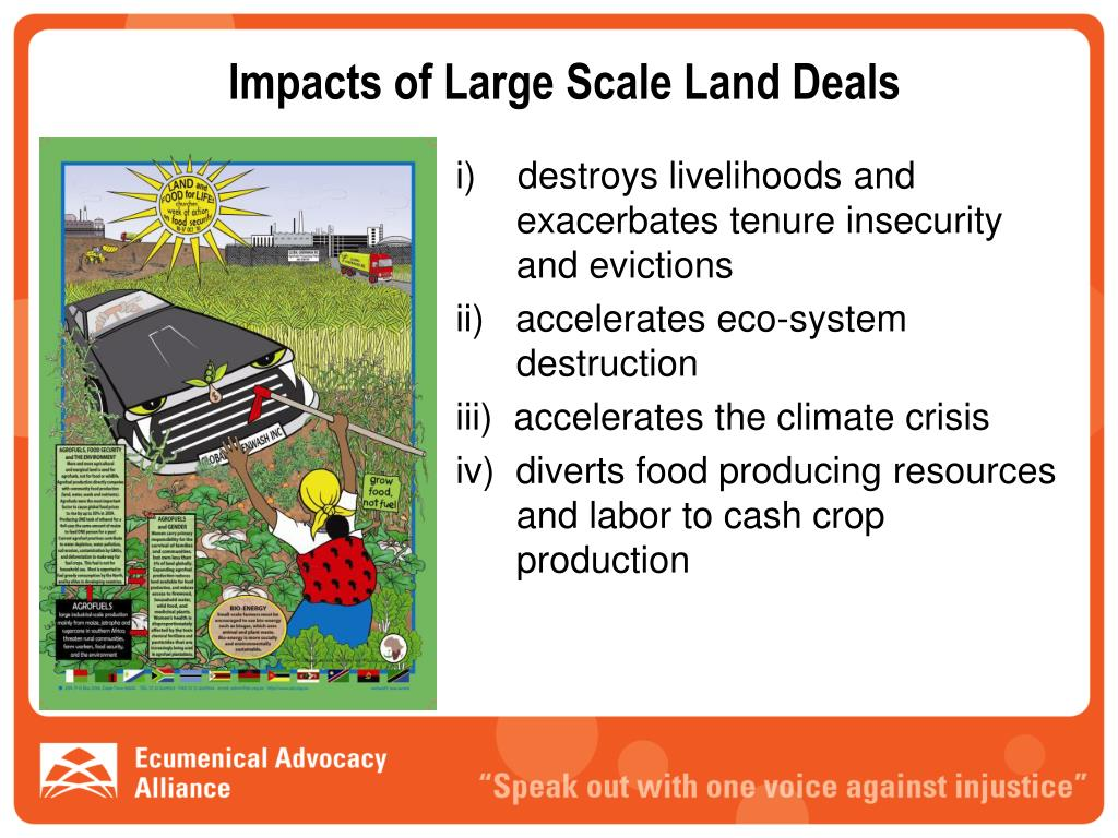 Impacts of Large Scale Land Deals