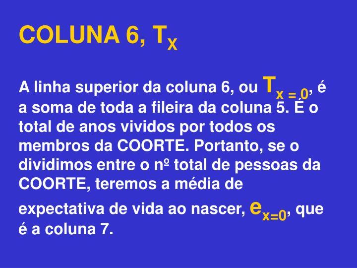 COLUNA 6, T