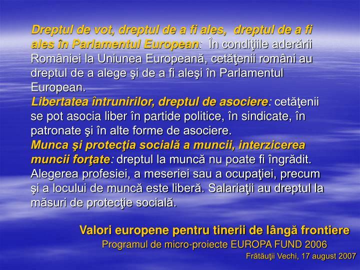 Dreptul de vot, dreptul de a fi ales,  dreptul de a fi ales în Parlamentul European