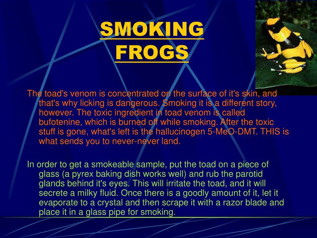 SMOKING FROGS