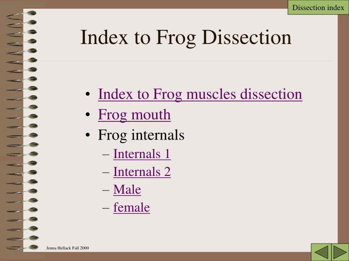 Index to frog dissection