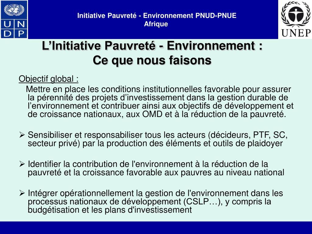 L'Initiative Pauvreté - Environnement : Ce que nous faisons