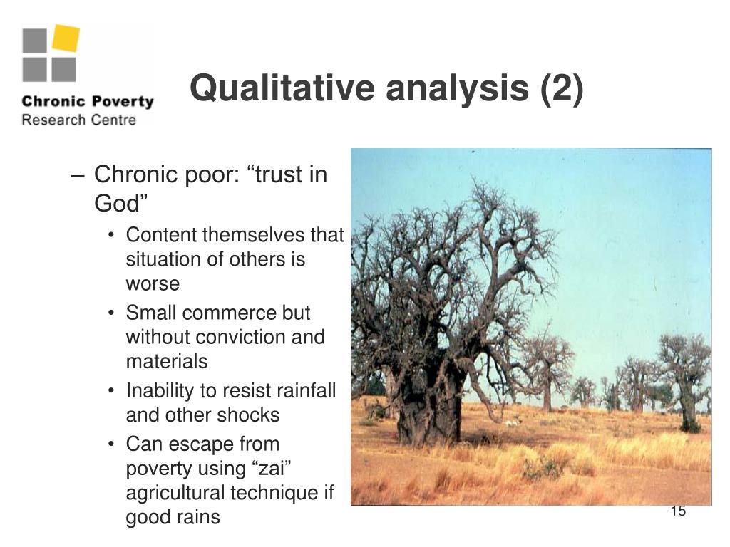 Qualitative analysis (2)
