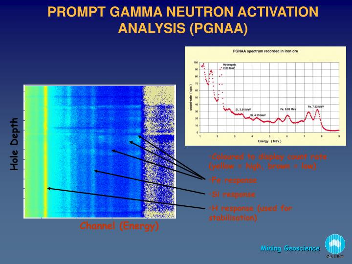 PROMPT GAMMA NEUTRON ACTIVATION ANALYSIS (PGNAA)