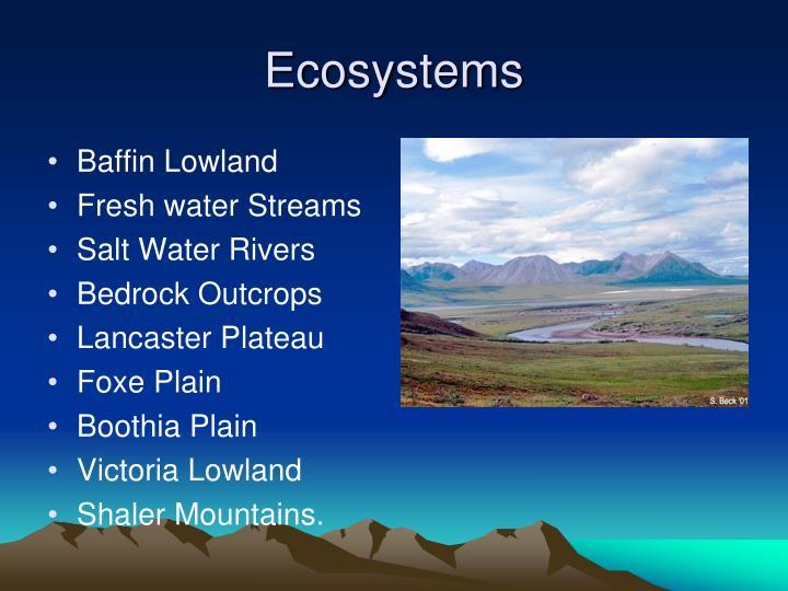 Baffin Lowland