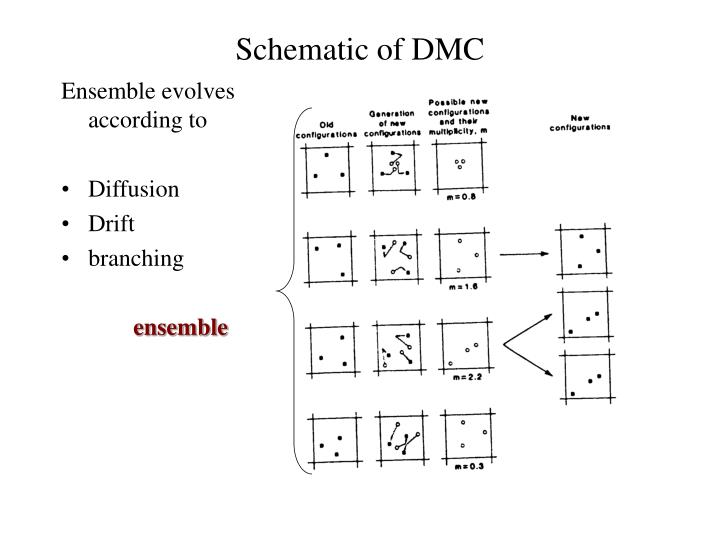 Schematic of DMC
