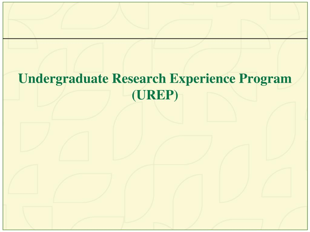 Undergraduate Research Experience Program