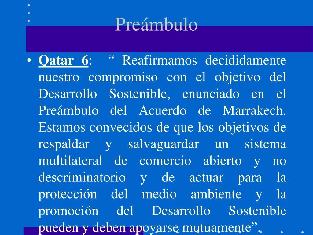 Preámbulo