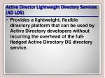 active director lightweight directory services ad lds