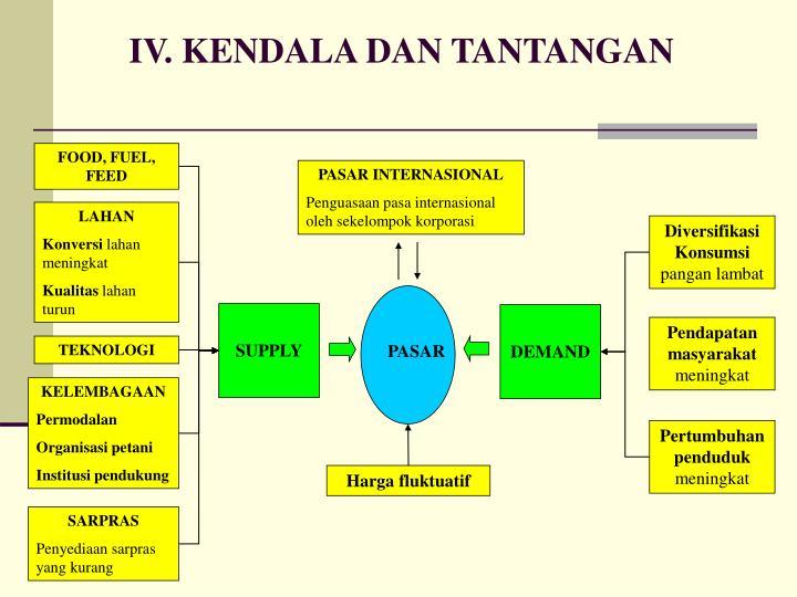 IV. KENDALA DAN TANTANGAN