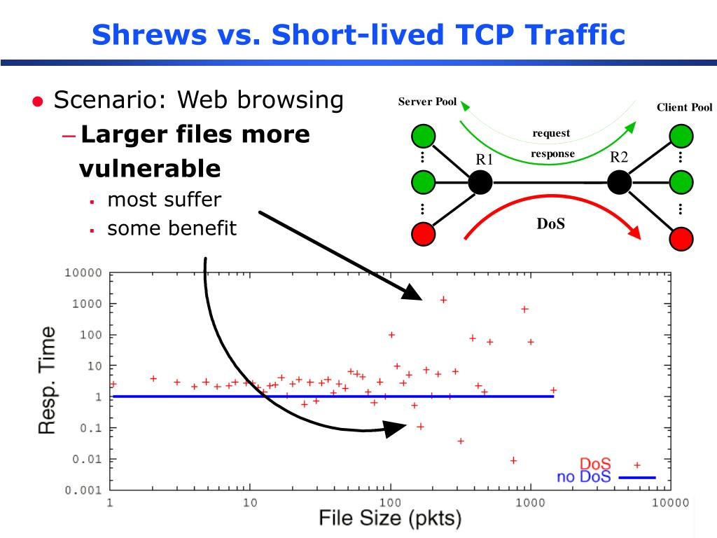 Shrews vs. Short-lived TCP Traffic