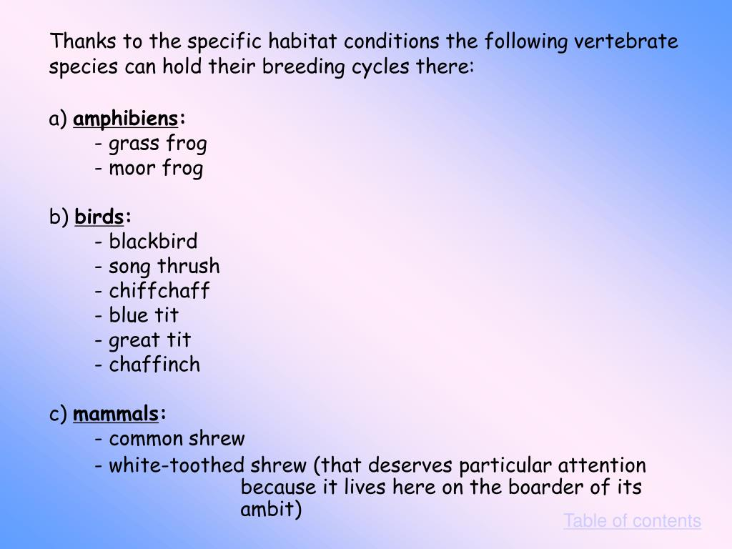 Thanks to the specific habitat conditions the following vertebrate species can hold their breeding cycles there: