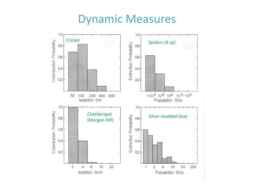 Dynamic Measures