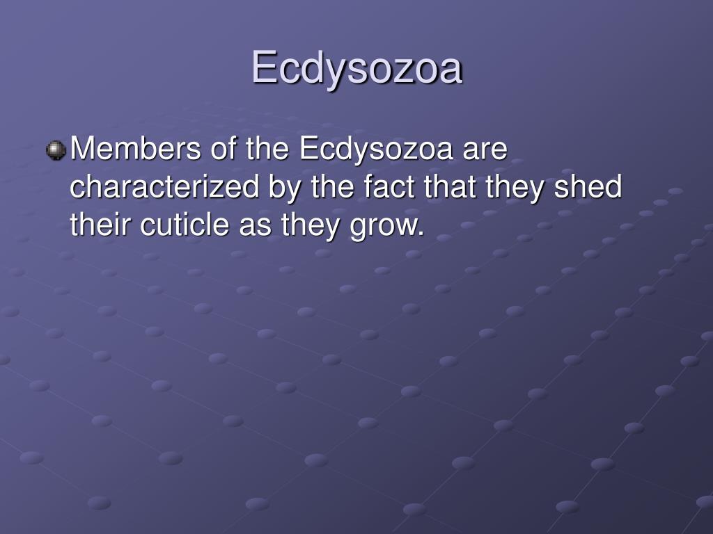 Ecdysozoa