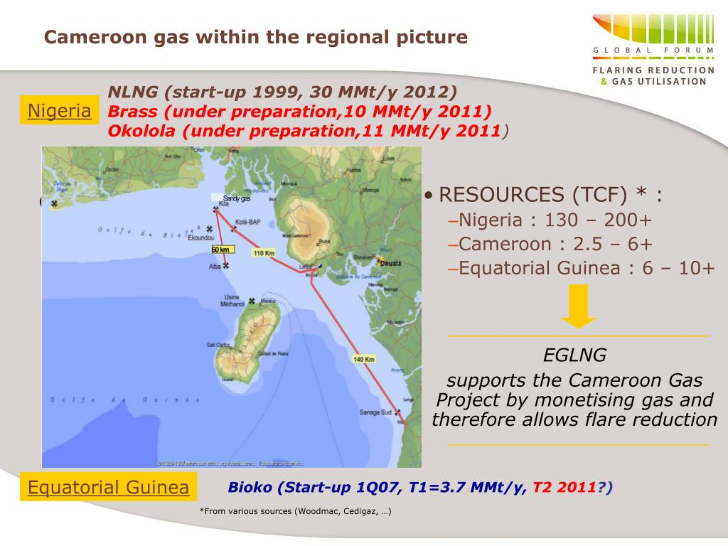 Cameroon gas within the regional picture