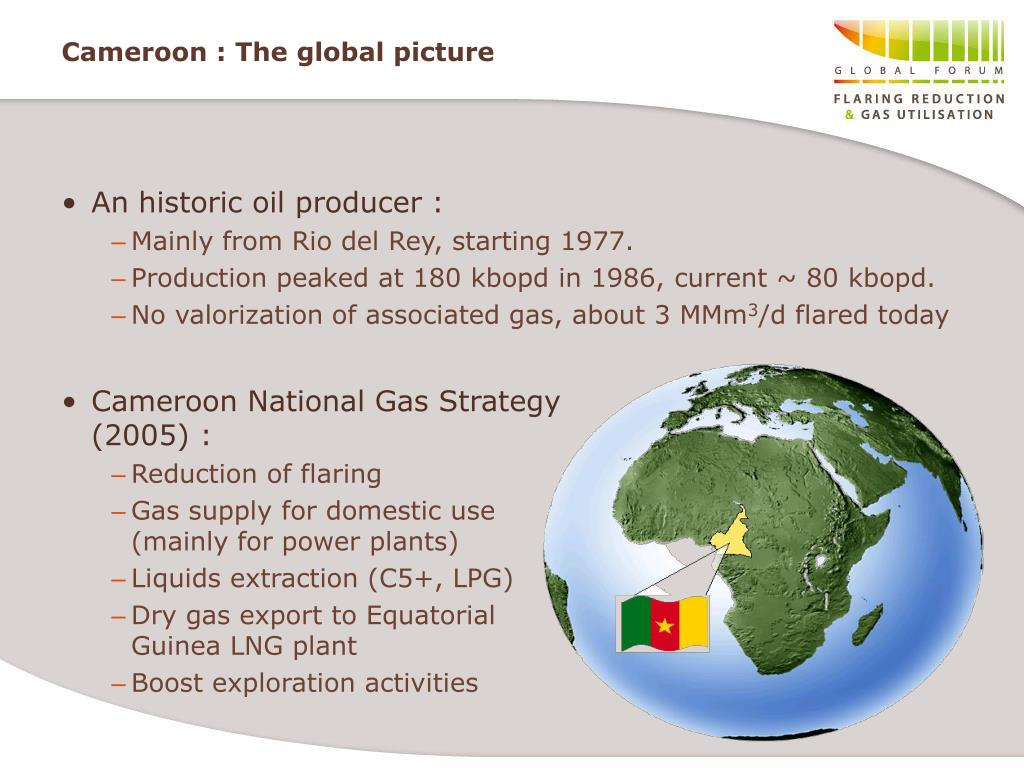 Cameroon : The global picture